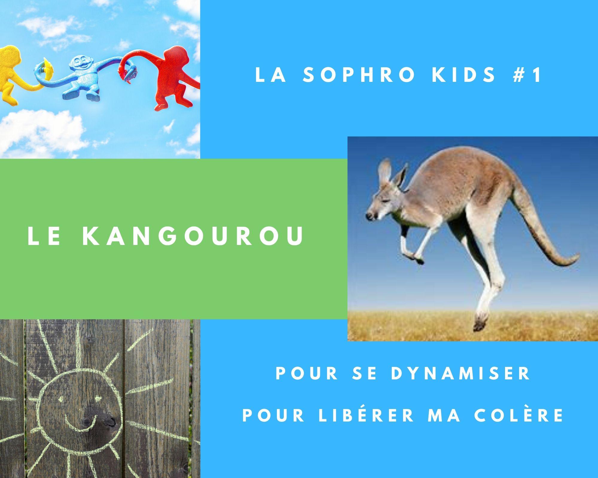 sophro kids 1 kangoo