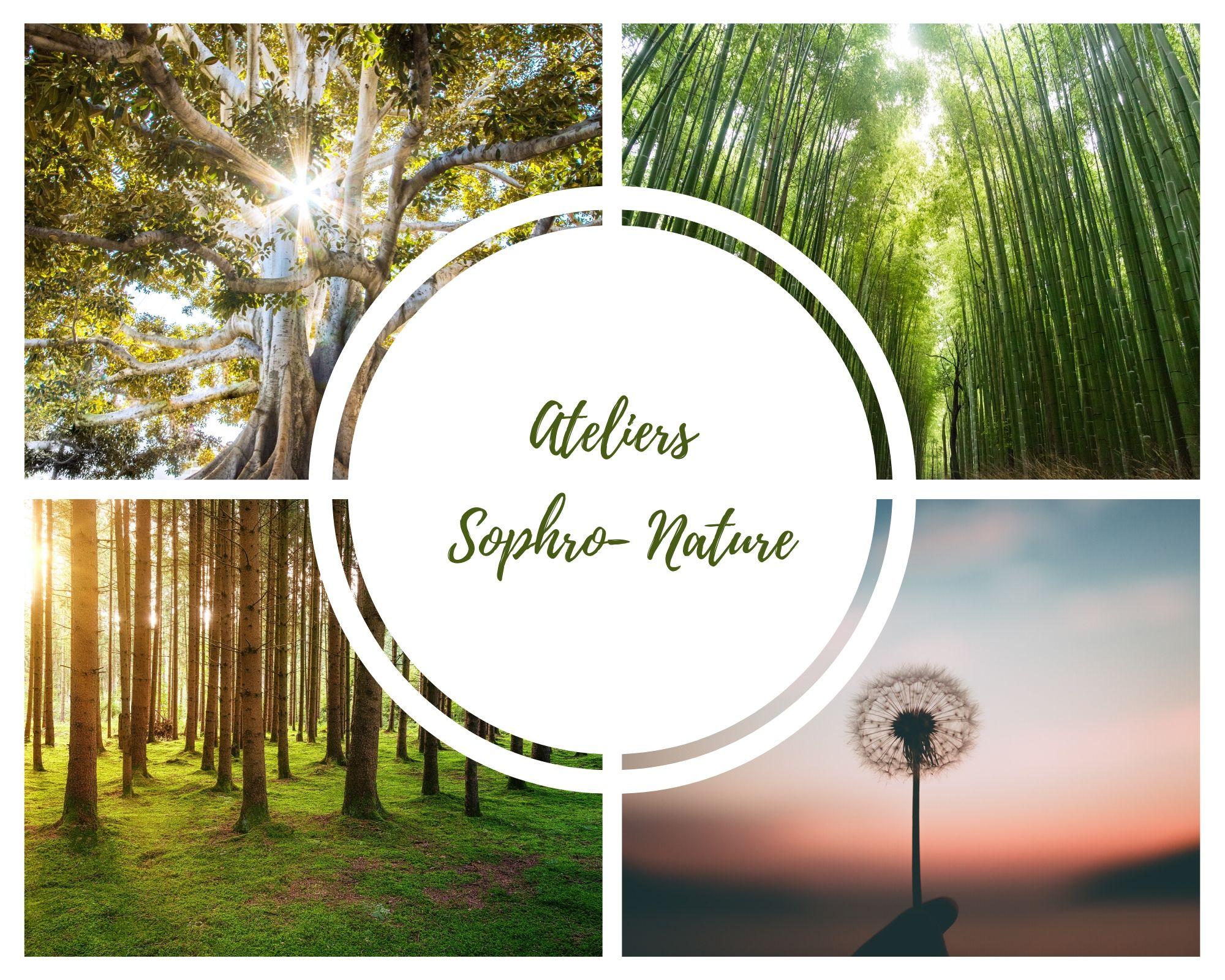 atelier sophro nature